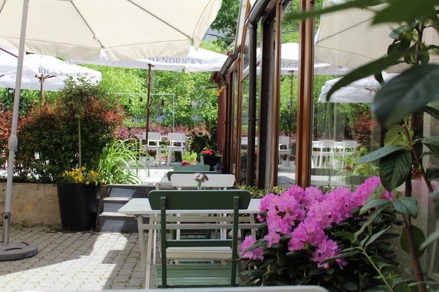 Градината на ресторант Щастливото прасе - Food and Cocktails